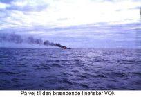 brandendelinefisker