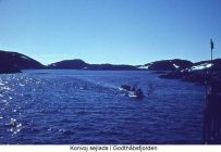 konvojgodthaabsfjordentext